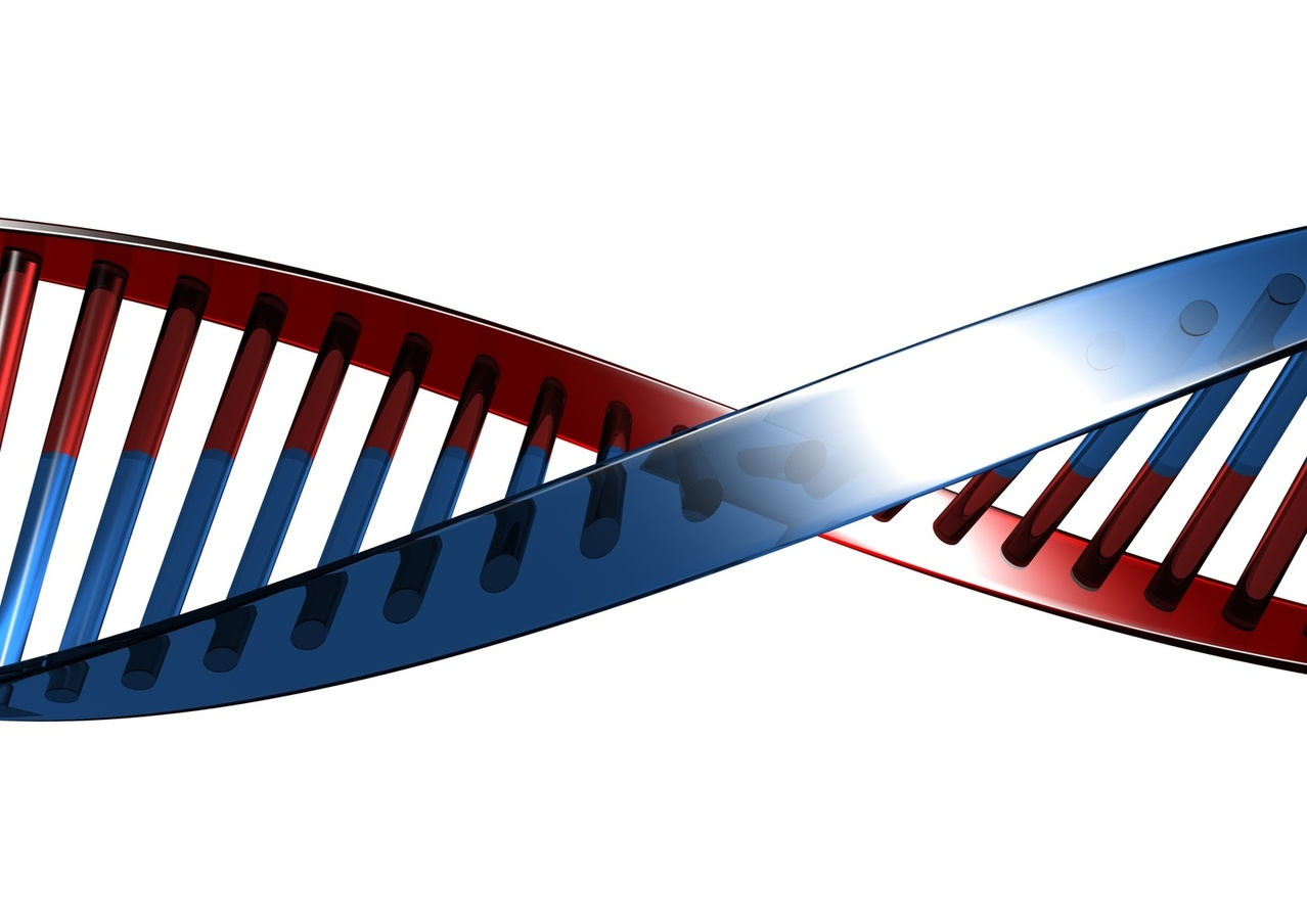 Genen ontdekt die rol spelen bij ontstaan van hoge bloeddruk