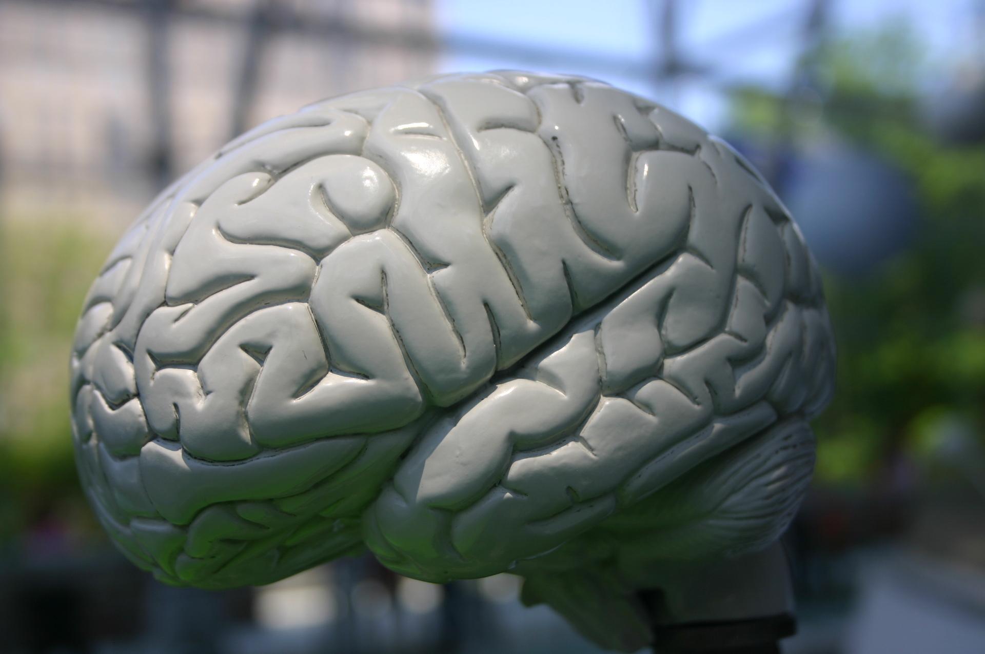 Gevolgen van hersenbloeding bijzonder beschreven