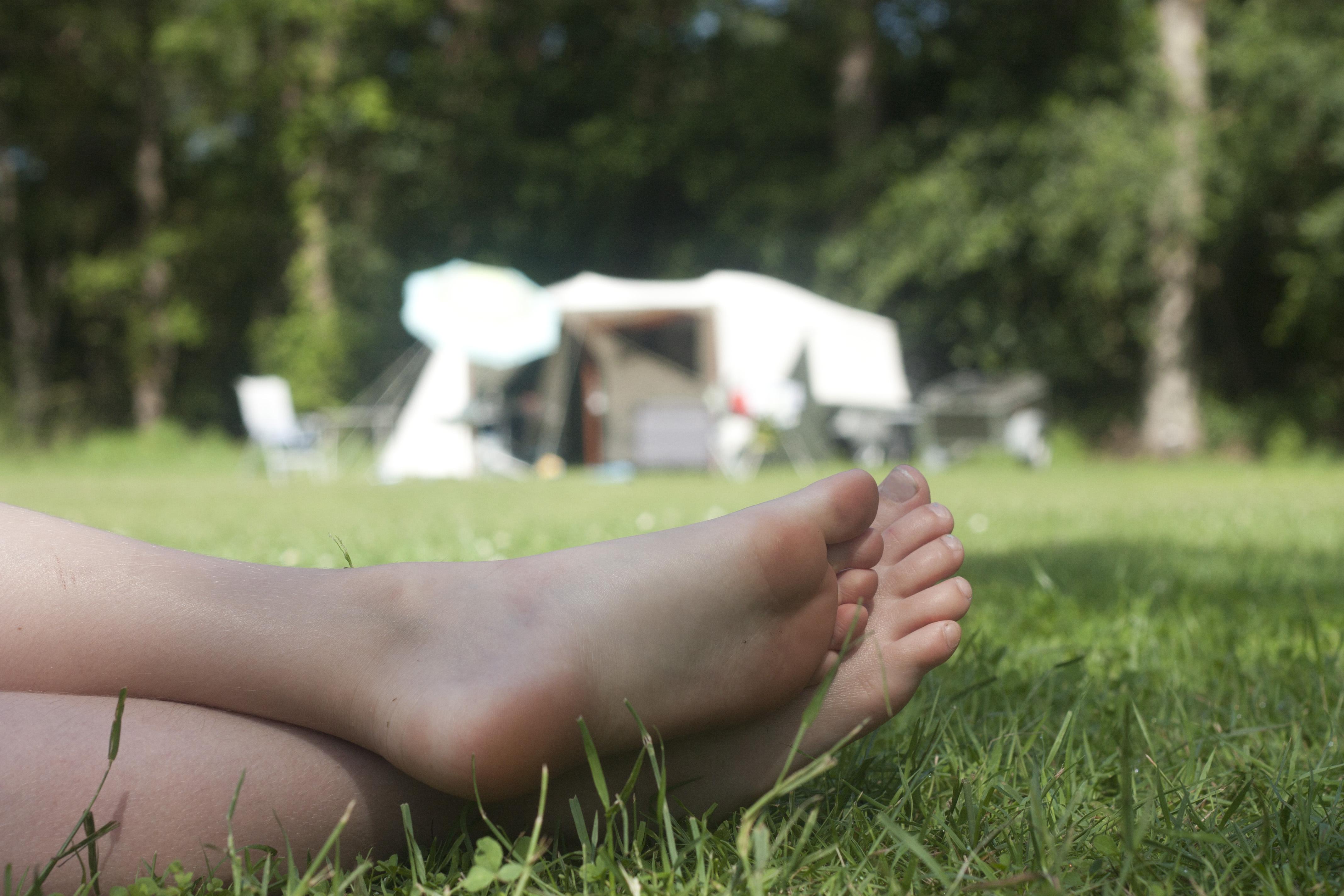 De Lemeler Esch in top 4 natuurcampings van Europa