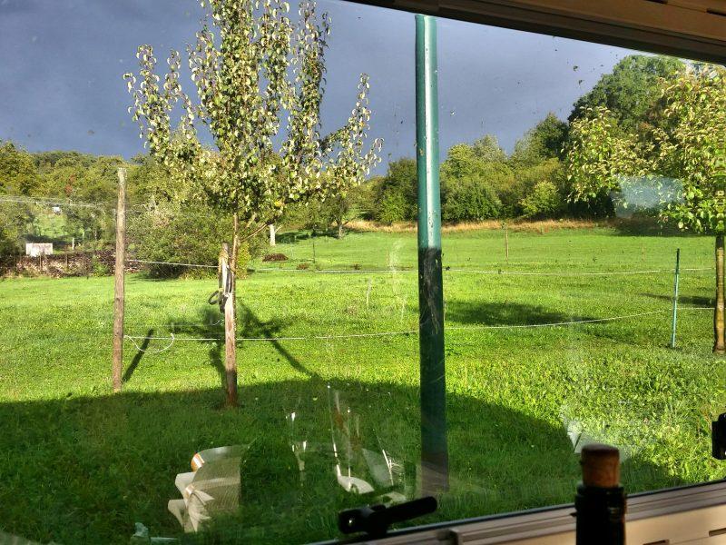 Uitzicht wijnboerderij