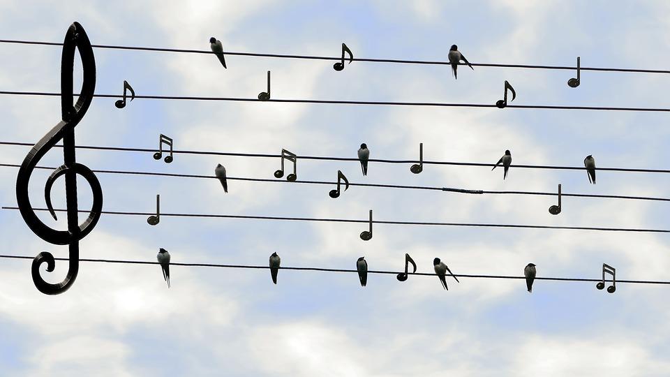 Dit laat zien dat klassieke muziek voor iedereen is
