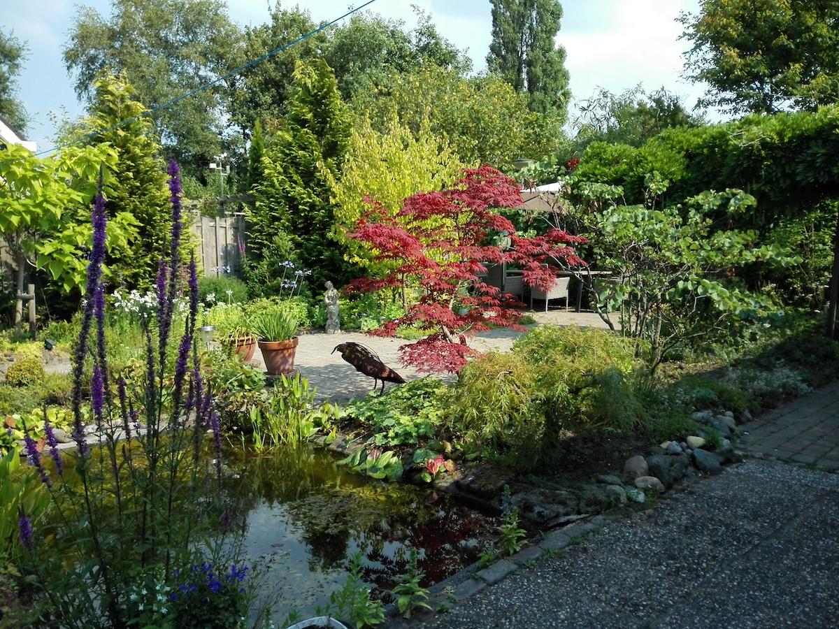 Een comfortabele tuin voor senioren