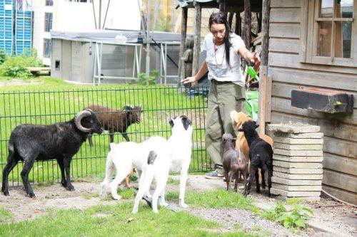 Maria en haar dieren