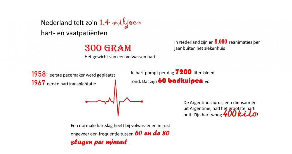 Cijfers over het hart