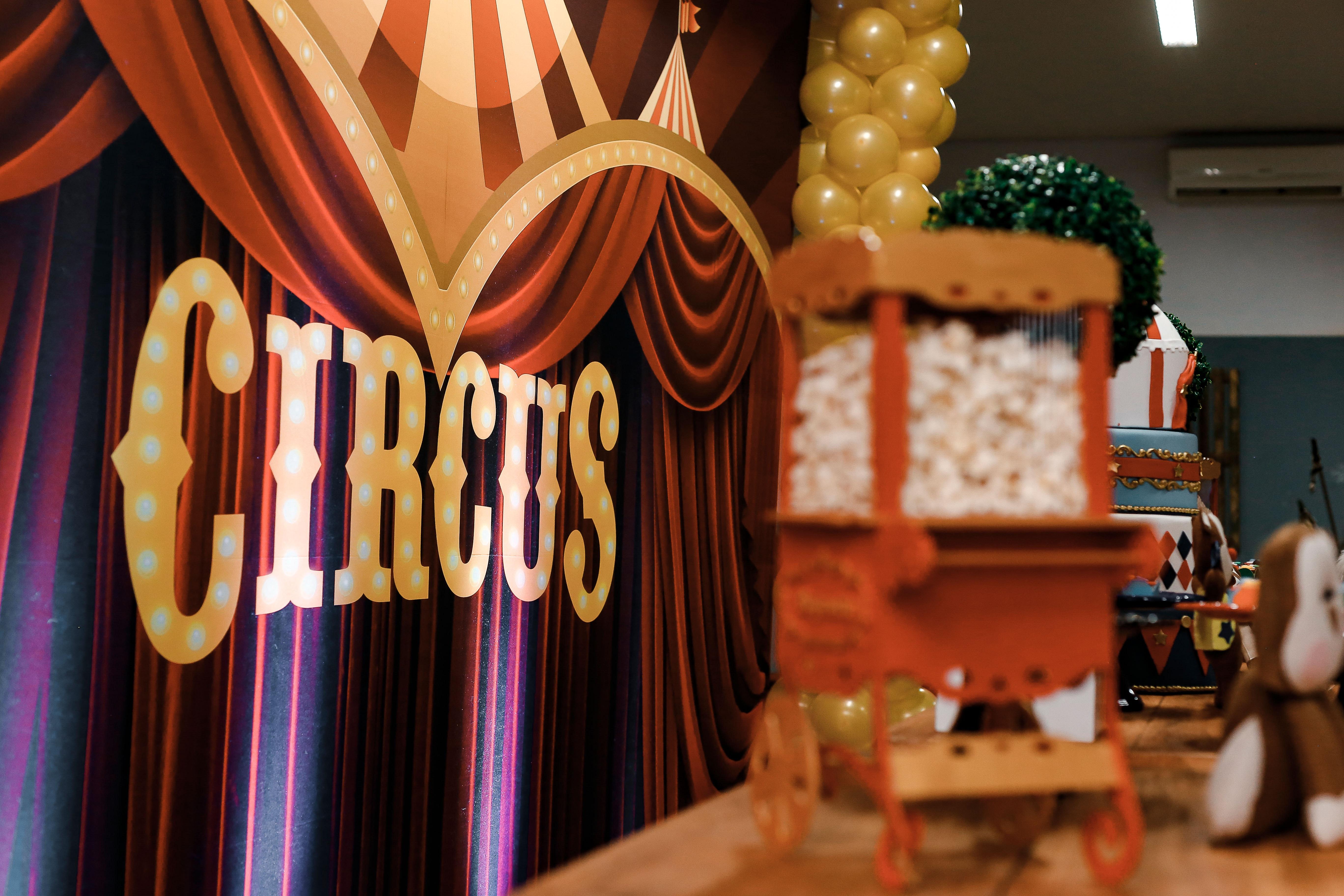 Waarom een zomeruitje naar het circus zoveel betekent voor eenzame ouderen