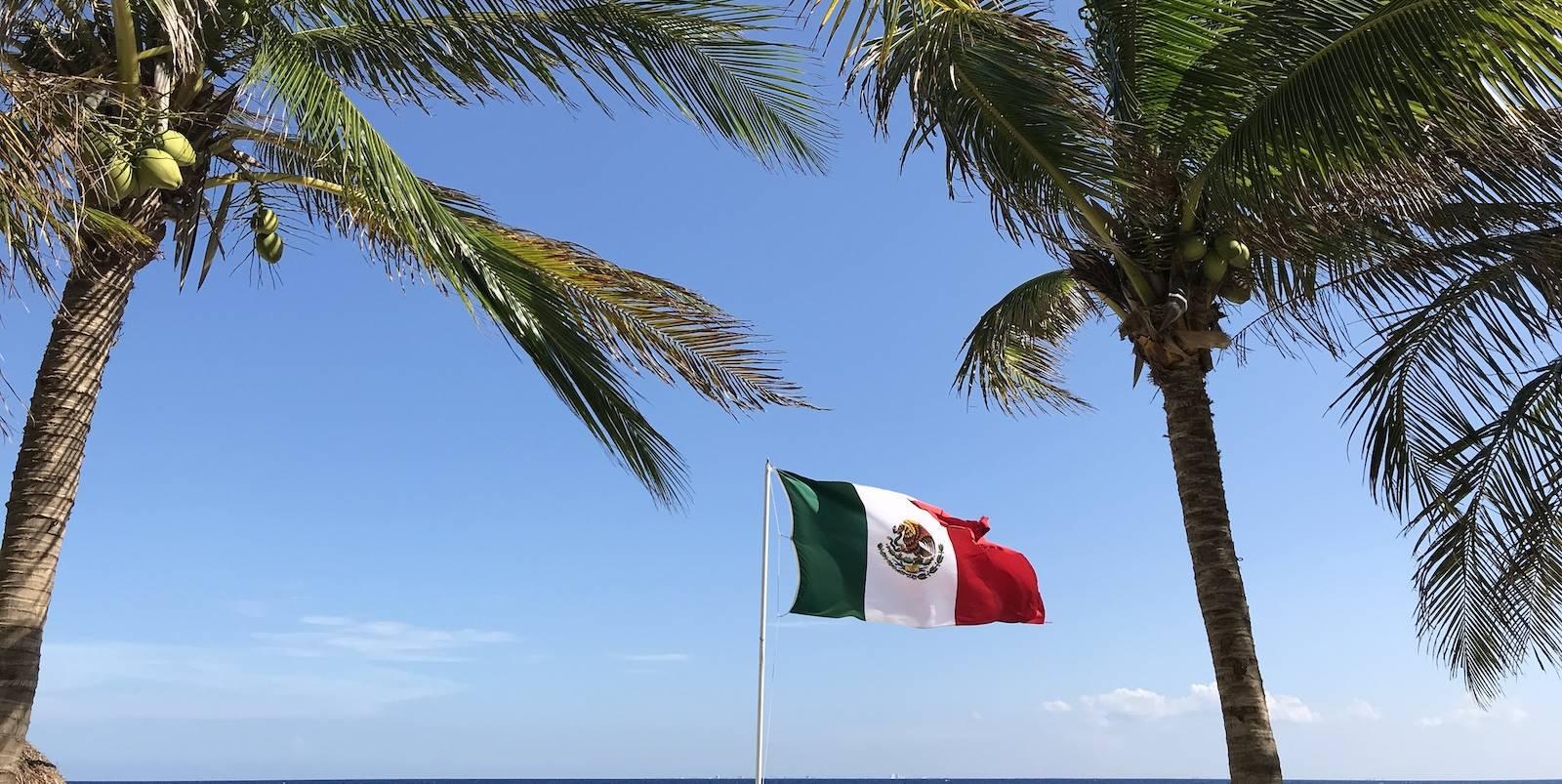 Jeanette in Mexico: 'Soms voelt het alsof ik achter de begonia's zit'